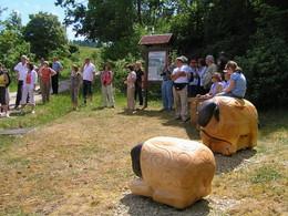 Bei einer geführten Wanderung ist die Gruppe an der Station mit den zwei geschnitzten Rhönschafen angekommen