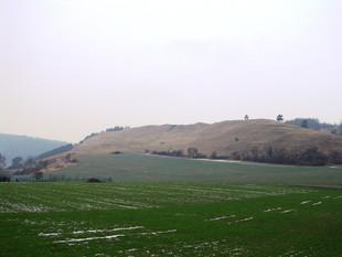 Die gleiche Ansicht dieser Kahlheide nach der Entfernung der Sämlinge als auch der noch vorhanden Altbäume  (Foto: J. Gombert)