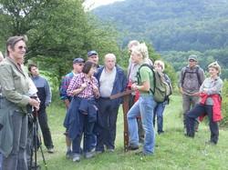 Frau Gombert ist umringt von einer Gruppe von Leuten und erläutert am Hexenpfad bei Fischbach im September den Fischbacher Wanderfreunde die Notwendigkeit der Landschaftspflege.