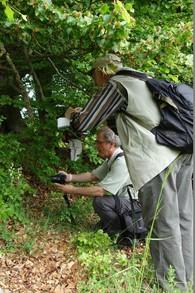 Zwei Exkursionteilnehmer fotografieren ein stattliches Exemplar des Weißen Waldvögeleins - einer Orchidee.