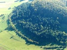 Bei Stepfershausen, im Kerngebiet 6, dominierte Kiefern- und Fichtensukzession die mageren und extensiv genutzten Grünlandbereiche. Das Foto machte Herr Stremke bei der Schrägluftbildbefliegung 2006.