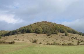 An einem schönen Herbsttag wurde der Hornberg noch einmal komplett fotografiert. Die Zahl der Wacholder ist stark reduziert und standortfremde Nadelgehölze finden sich nicht mehr auf der Fläche