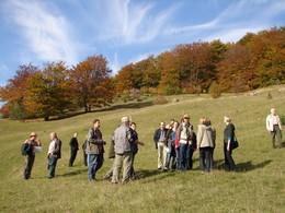 Bereits zum 3. Mal fand in der Rhön eine Vortragsreihe - organisiert von der TLUG Jena, dem BR Rhön und unserem LPV - mit anschließender Exkursion ins Projekt statt. Auf dem Bild sind die Teilnehmer der Exkursion vor der Kulisse der Fischbacher Hutebuc
