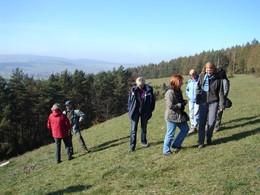 Einige Mitglieder der Projektbegleitenden Arbeitsgruppe stehen oberhalb des Kiefernwäldchens am Grimmelbachspeicher. Sie überzeugten sich im Oktober vom Fortschritt der der Pflegearbeiten bei Kaltensundheim.