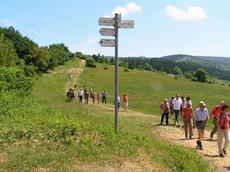 Eine Wandergruppe läuft den Schäferweg im Bereich der Lühr