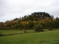 die Luftaufnahme zeigt den Hofberg als Herbstaspekt, frei von standortfremden Gehölzen