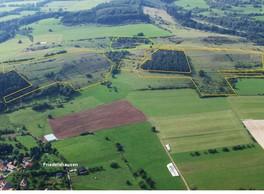 Zwischen Friedelshausen und Hümpfershausen im KG 4 erstreckt sich der Glasberg-Spielberg Komplex mit ausgedehnten Kalkmagerrasen, die in den vergangenen Jahren gepflegt wurden. Diese Bereiche sind auf dem Bild gelb markiert. Ein noch ausstehender Bereich