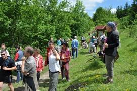 Andere Besucher nahmen an der geführten Wanderung teil und lißen sich Wissenswertes über Besonderheiten entlang des Weges berichten.