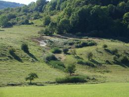 """das artenreiche """"Quellmoor Seeba"""" (KG 6) wird 2 mal jährlich gemäht"""