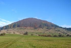 Der gesamt Hornberg bei Urnshausen ist auf einem Übersichtsfoto vor Beginn der Erstpflege zu sehen