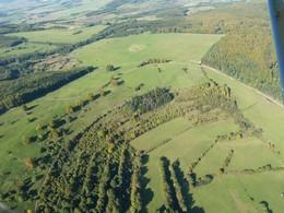 Die Aufnahme zeigt den Bereich Schweinsgrube/ Saubrücke vor Beginn der Pflegemaßnahmen. Verbuschung, überwiegend aus Weißdorn bestehend, erschwerte die Beweidung der Flächen zunehmend oder machte sie fast unmöglich (Foto: D. Stremke, 2006).