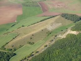 Das Kahlköpfchen befindet sich wie der Hofberg im Kerngebiet 1. - hier eine Ansicht mit ebenfalls dichter Schwarzkiefernsukkzession (Foto: D. Stremke, 2006)