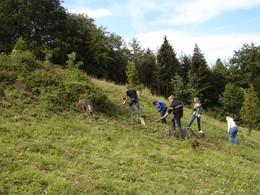 Am Kuhkopf bei Diedorf (KG3) half wie in den vergangen Jahren eine Klassse des Rhöngymnasiums bei der Nachpflege (Foto: LPV)