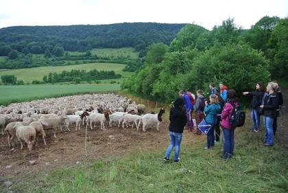 Schüler des Bad Salzunger Gymnasiums bei einer Wanderung entlang des Hexenpfades