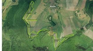 Südlich von Wiesenthal, im KG 2, erstreckt sich ein ca. 7 km langes Hutungsband. Seit Projektbeginn wird an dessen Optimierung gearbeitet. Im Winter 2011/12 wurde der letzte Abschnitt verbreitert, indem vor allem Lärchen und Fichten entnommen wurden. (O