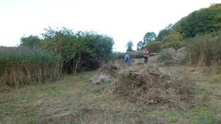 Zwei Vertreter der Forstamtes Kaltennordheim tragen das Mahdgut zusammen, welches zunächst auf großen Haufen gesammelt wird.