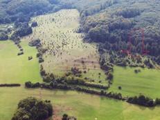 Eine Schrägluftbildaufnahme zeigt die Wiesenthaler Schweiz - eine ausgedehnte Wacholderheide. Ein roter Pfeil markiert einen relativ zugewachsenen Bereich, welcher über das Naturschutzgroßprojekt freigestellt wurde.