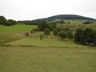 Das Bild zeigt die Feuchtfläche am Grimmelbachspeicher mit einer Gruppe Jugendlicher, die das Mahdgut von der Fläche beräumen. Nach 3-jähriger Aushagerungsmahd über das Großprojekt, organisierte der LPV 2010 für die Feuchtfläche am Grimmelbachspei