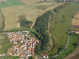 Dieselbe Fläche, aus demselben Blickwinkel im Sommer 2009 nach der 1. Nachpflege (Foto: LPV)
