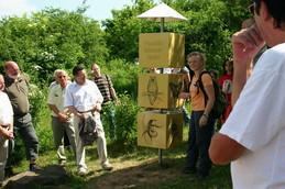Die drei je 50cm hohen Würfel zeigen typische Arten verschiedener Lebensräume in der Rhön