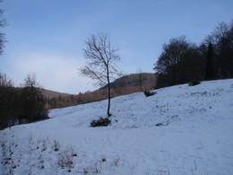 Erfreulicherweise konnten die Maßnahmen abgeschlossen werden, bevor eine geschlossene Schneedecke das bodennahe Abschneiden der Gehölze erschwerte.