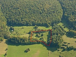 Eine Schrägluftbildaufnahme zeigt das Beertal bei Fischbach - eine relativ kleine, von Bäumen umschlossene Fläche. In den letzen Jahren wurde hier über das Projekt bereits ein Schaftränke installiert.