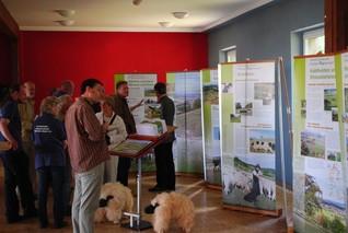 Eine Gruppe von Leuten betrachtet die Banner der Wanderausstellung. Auch die Sitzschafe mit Holzkörper und echter Schafwolle sind zu sehen