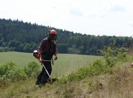 Das Bild zeigt einen Forstarbeiter in Schutzkleidung (Schnittschutzhose und Helm) bei der Nachpflege der Flächen im Sommer mit Freischneider. Der aufkommende Schlehen- und Hartriegeljungwuchs muss in Handarbeit entfernt werden.