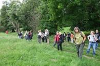 Die Teilnehmer des Workshops wandern in der Elbaue entlang.