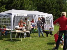 Naturmemory und Wissenswertes zu heimischen Kräutern mit Helga Suß vom Umweltinfozentrum Meiningen