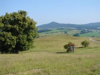 Zusätzlich wird mit Tafeln in besonders sensiblen Bereichen eine gezielte Lenkung der Besucher angestrebt - hier Hofberg beri Roßdorf (KG1) (Foto: LPV)