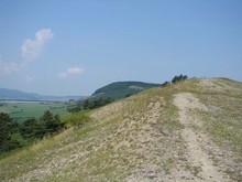 Das Kahlköpfchen bei Roßdorf im Kerngebiet 1, eine markante Kahlheide mit lückiger Vegetation (Foto: J. Gombert)